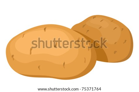 The potatoes. Vector illustration. Isolated on white background.