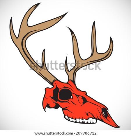 The skull of a deer. Vector. - stock vector