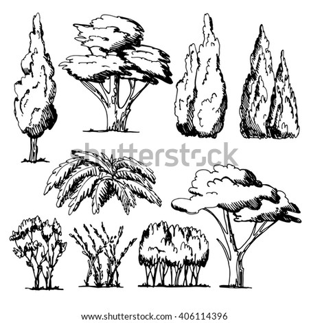 The trees surroundings drawn by hand.Bushes and trees of a different form.Vector illustration. - stock vector