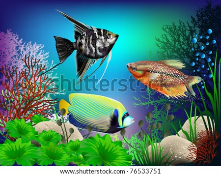 The underwater world of fish and plants - stock vector