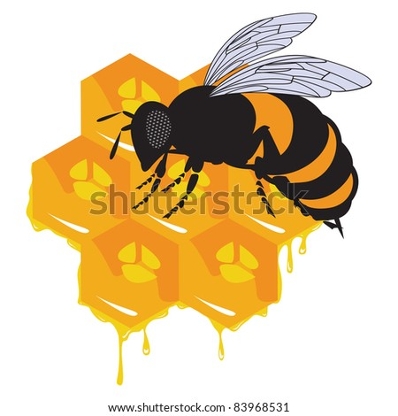 the vector bees and honeycomb with honey - stock vector