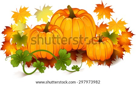 The vector illustration of pumpkins, maple leafs. It is autumn. It is Thanksgiving day. - stock vector