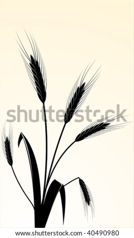 The vector image of wheaten ears - stock vector