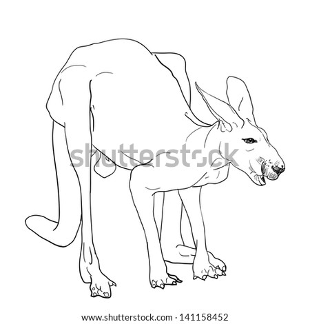 Tapir outline illustration stock vector 269324759 for Tapir coloring page