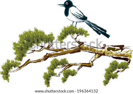 The view of magpie on the pine  - stock vector