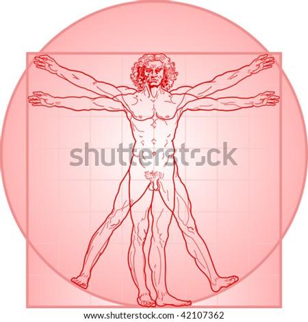The Vitruvian man, or so called Leonardo da Vinci man. Detailed drawing. In Red. - stock vector