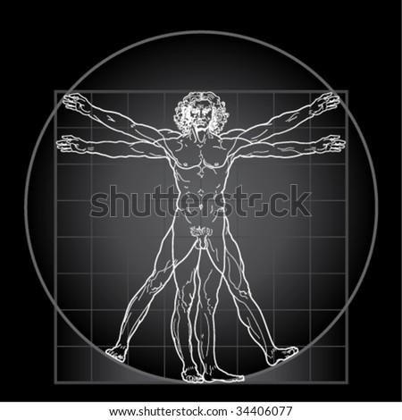 The Vitruvian man, or so called Leonardo's man. Detailed drawing. Invert version. - stock vector