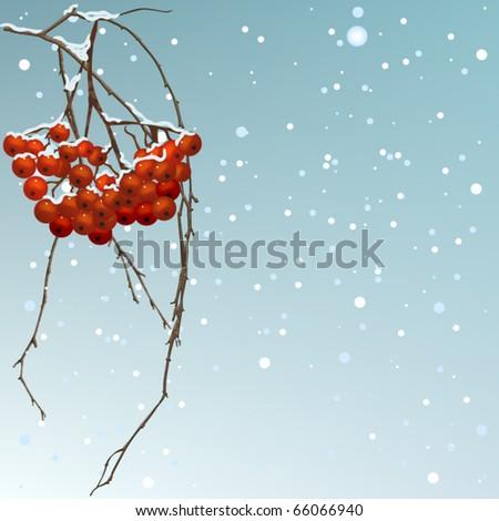 The winter background thread rowan. - stock vector