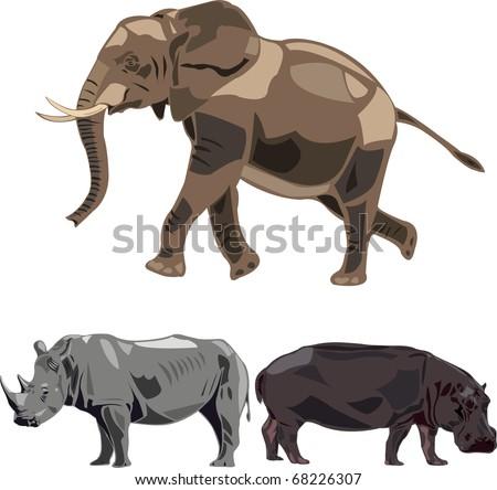 The world's largest three herbivores - elephants, rhino, hippo. - stock vector