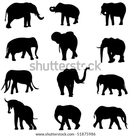 The world's three kinds of elephants:  the African savannah elephant , the African forest elephant and Asian elephant - stock vector