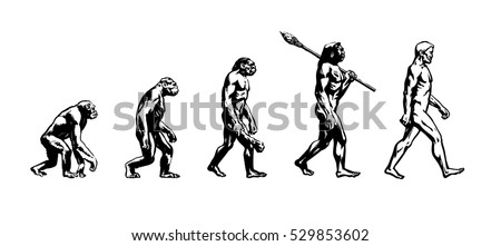 Theory of evolution of man.Human development.Cro-Magnon, Neanderthal,Java Man, Australopithecine, monkey, Homo-sapience, hominid, primate. Hand drawn sketch vector illustration isolated on white