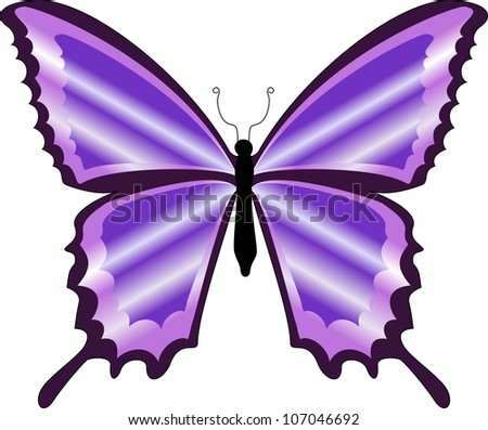 There is a beautiful colorful purple butterfly - stock vector