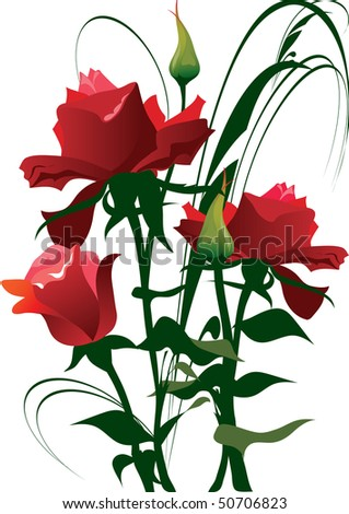 this illustration depicts beautiful plants and flowers - stock vector