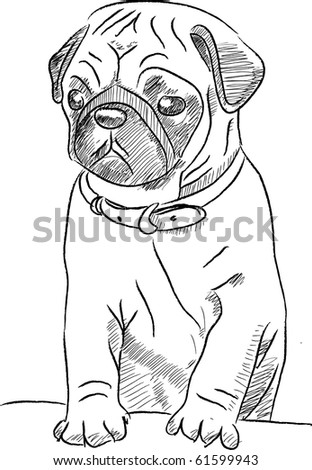This is a Pug in vector sketch file - stock vector