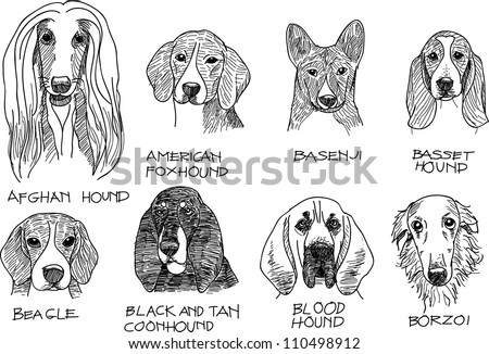 this is a vector file of Hound dog.sketch in black and white shade. - stock vector