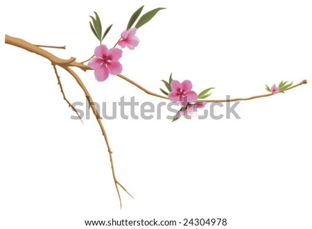 This vector picture represents a peach branch with blossom - stock vector