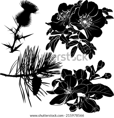thistle dogrose rose blooming apple Trees a fur-tree - stock vector