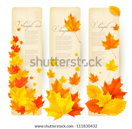 Three autumn banners with colorful leaves  Vector - stock vector