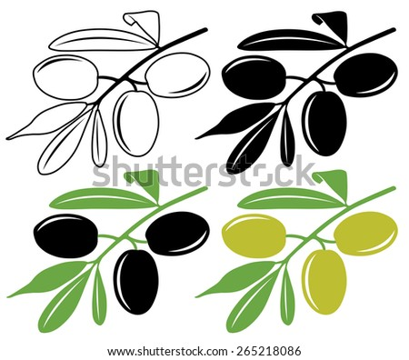 Three black and green olives on a branch, vector illustration in color and line art - stock vector