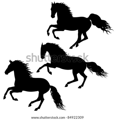 Three black running horses silhouettes isolated on white background - stock vector