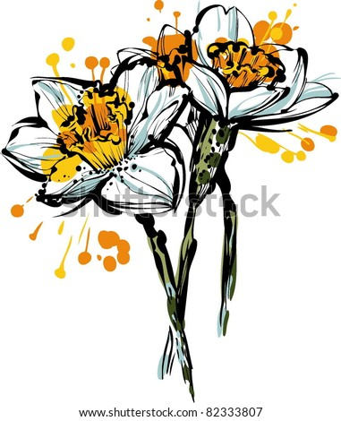 three flowers of narcissus