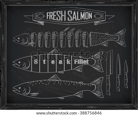 three fresh salmon from the scheme drawing in the chalk and knives - stock vector