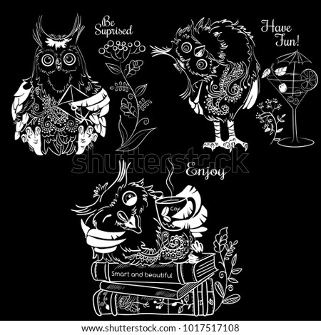 Three funny owls white illustration on a black background