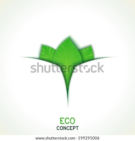 Three realistic leaves on conceptual eco background. Vector eps 10 - stock vector