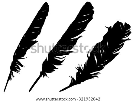 Three silhouettes of feathers - stock vector