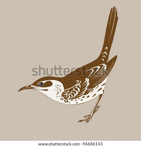 thrush silhouette on brown  background, vector illustration - stock vector