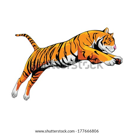 Tiger roar vector - photo#22