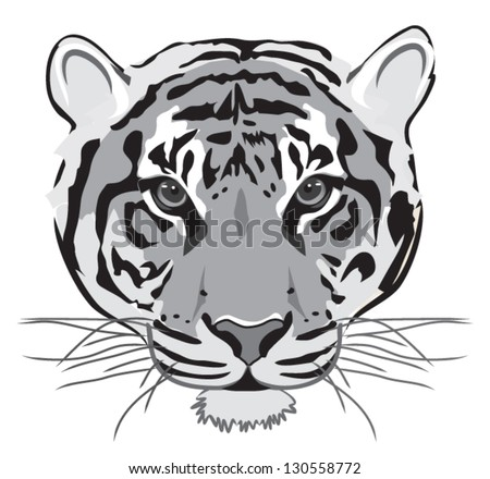 tiger black white outline - stock vector