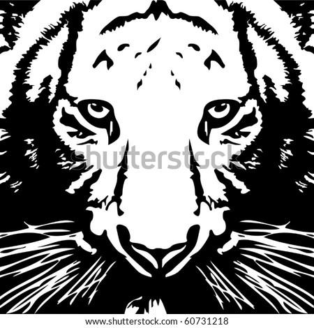Tiger black& white vector - stock vector