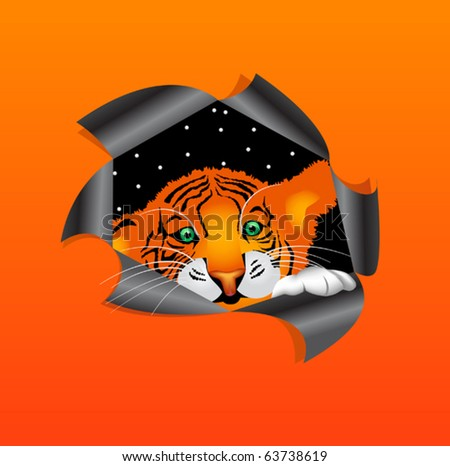 tiger cub - stock vector