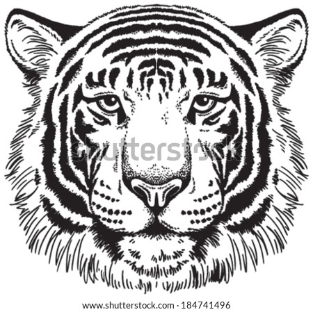 Tiger face: Black and white vector sketch - stock vector