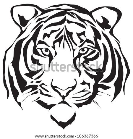 White tiger face side