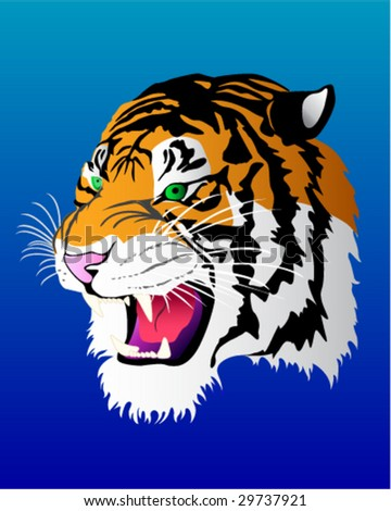 Tiger Head Vector Illustration - stock vector