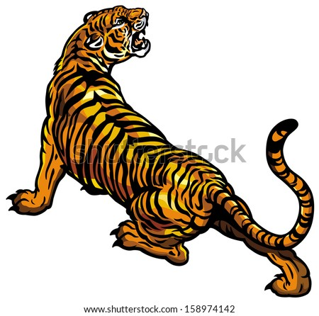 tiger isolated on white background - stock vector