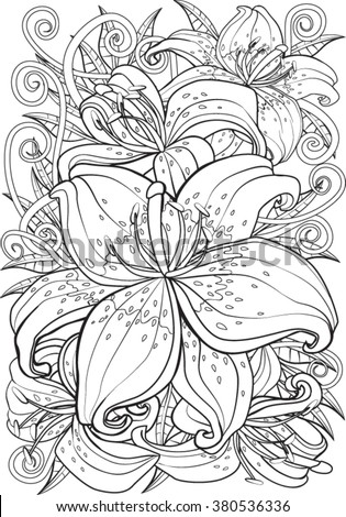 Tiger lily. Hand drawn vector illustration.
