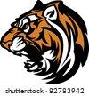 Tiger Mascot Graphic - stock photo