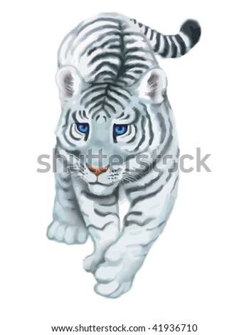 tiger on white background - stock vector