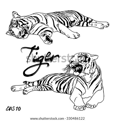 Tiger Paw Stock Photos Royalty Free Images Amp Vectors