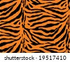 Tiger Stripe Background - stock vector