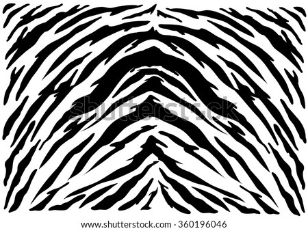 Tiger texture abstract background. - stock vector