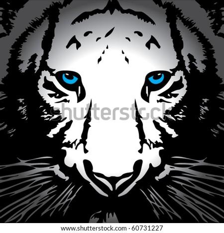 Tiger vector - stock vector