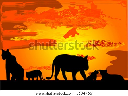 tigers in africa - stock vector