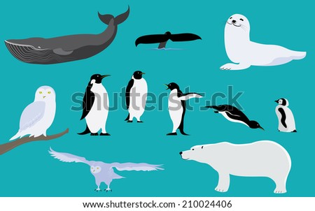 Title: Arctic and Antarctica Animals Description: Set of arctic and antarctica animals penguin polar bear whale owl seal - stock vector