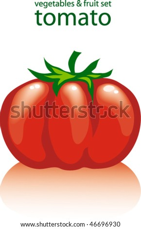 tomato - stock vector