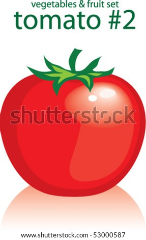 tomato 2 - stock vector