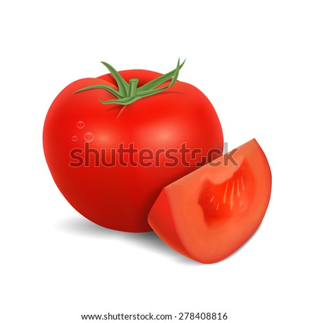 Tomato isolated on white. High quality vector. EPS10 vector. - stock vector
